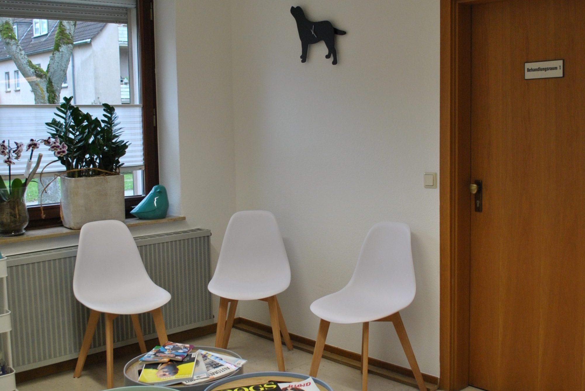 Praxis-Warteraum Dr. Brockhaus in Hattingen, tierarzt